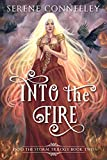 Into the Fire: Into the Storm Trilogy Book Two