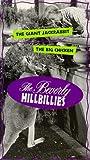 Beverly Hillbillies, Vol, 6: The Giant Jackrabbit & The Big Chicken [VHS]