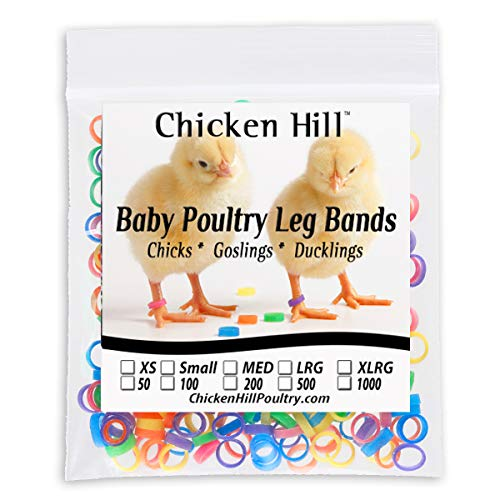 (Baby Poultry Leg Bands Size 3 Small 3/16