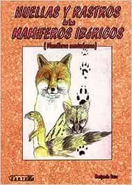 Huellas Y Rastros De Los Mamíferos Ibéricos: Amazon.es: Sanza, Benjamin: Libros