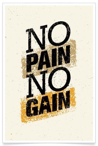 Amazoncom Visual Vitamins Motivational Posters Rp4 No Pain No Gain
