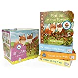 img - for Animal Babies Lift-a-Flap Boxed Set 4-Pack: Babies on the Farm, Babies in the Forest, Babies in the Snow, Babies in the Wild (Chunky Lift a Flap) book / textbook / text book