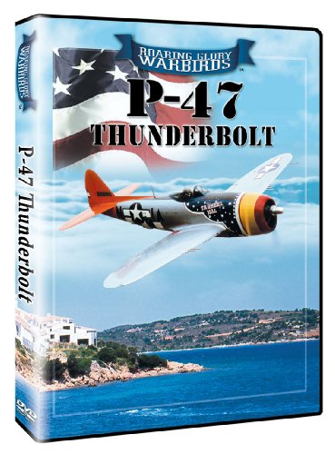 (Roaring Glory Warbirds: P-47 Thunderbolt)