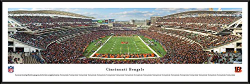 Cincinnati Bengals - End Zone in Paul Brown Field - Panoramic Print