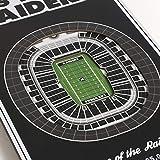 YouTheFan NFL Las Vegas Raiders 8x32 3D Stadium
