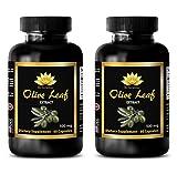Immune support pill - OLIVE LEAF EXTRACT - Antioxidant pills - 2 Bottle 120 Capsules