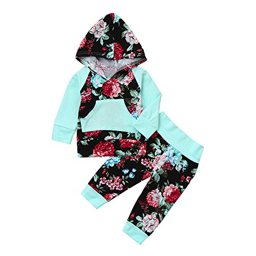 Girls Hoodie Tops Blouse + Florla Pants for 0-2 Years Old Baby Outfit Set (12-18 Months, Blue)