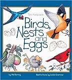 Birds, Nests, And Eggs (Turtleback School & Library Binding Edition)