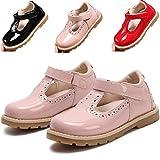 DADAWEN Girl's T-Strap School Uniform Dress Shoe Mary Jane Princess Flat Pink US Size 5 M Toddler