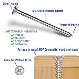 "#4 X 1/4"" Stainless Oval Head Phillips Wood Screw"