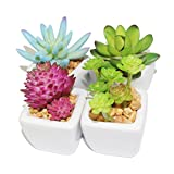 Myartte Home Decor-Set of 4 small Cube-Shaped Ceramic Pot with 4 different Artificial Succulent Plant for Home decoration Office decoration