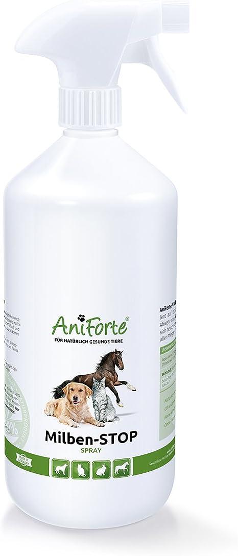 aniforte ácaros Stop Spray – con la picor a través de los Hongos y ácaros y cantar – Producto natural para perros, gatos y Caballos: Amazon.es: Productos para mascotas