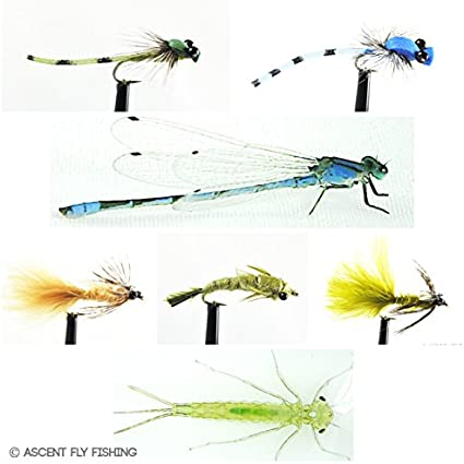 8 X REALISTIC  WINGED EYED DAMSELS FISHING FLIES  SIZE 8 BY AQUASTRONG 62A