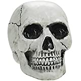 Halloween Mini Skulls Multipack