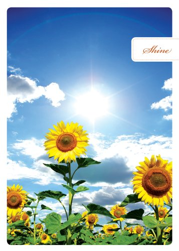 Tree Free Greetings Shine Glorious Birthday Cards, 2 Card Set, Sunflowers, Multicolored (14093)