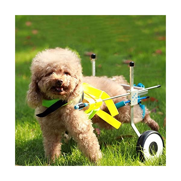 Pet Moped Dog Wheelchair Old Dog Walking Scooter Disabled Dog Assisted Vehicle Hind Leg Exerciser Dog Cat Car (Size : XS) 4