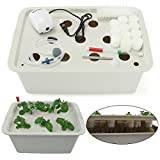 √What advantages our product got?●Just enjoy gardening indoor avoiding any bad weather, like rain, snow, cold, storm and hurricane not outdoor with Pathonor Grow Lights to promote the growth even faster. Also, It can be used outdoors like soil pot wi...