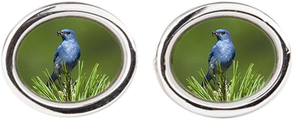 Truly Teague Cufflinks Oval Blue Bird on an Evergreen