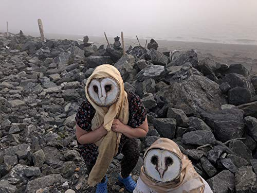 Barn Owl Masks, Group, couple's masquerade costume, Halloween costume, Three Carnival -