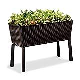 KETER Urban Bloomer 12.7 Gallon Raised Garden Bed