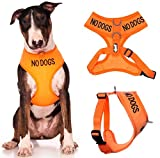 NO DOGS (Not good with other dogs) Orange Color Coded Non-Pull Front and Back D Ring Padded and Waterproof Vest Dog Harness PREVENTS Accidents By Warning Others Of Your Dog In Advance (L)