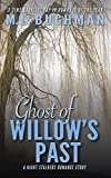 Ghost of Willow's Past: a Christmas Story (The Night Stalkers Short Stories Book 1)