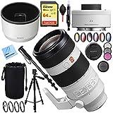 Sony FE 100-400mm f/4.5-5.6 GM OSS E-Mount Lens SEL20TC FE 2.0X Teleconverter Lens Plus 64GB Accessories Bundle