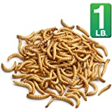 Mr. Mealworm Bulk Dried Mealworms (1 lbs) - For Chickens, Blue Birds, Reptiles, Fish