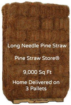 "Pine Straw Mulch - Pine Needle Mulch - 9000SqFt - 14"" Landscape Mulch"