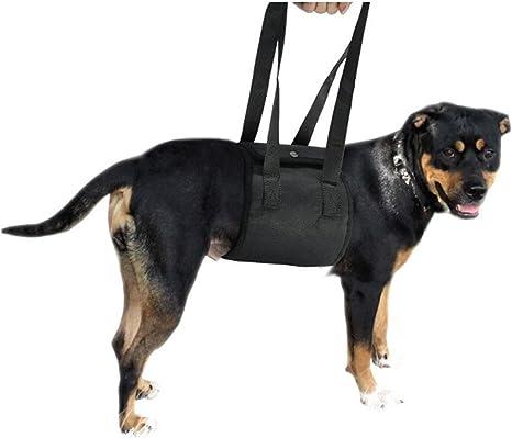 Aolvo Arnés de perro ajustable con soporte de elevación para ...