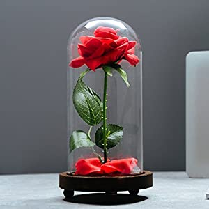 "VGIA ""Beauty and The Beast Artificial Silk Rose in Glass Dome on a Wooden Base Gift for Valentine's Day Anniversary Birthday 104"