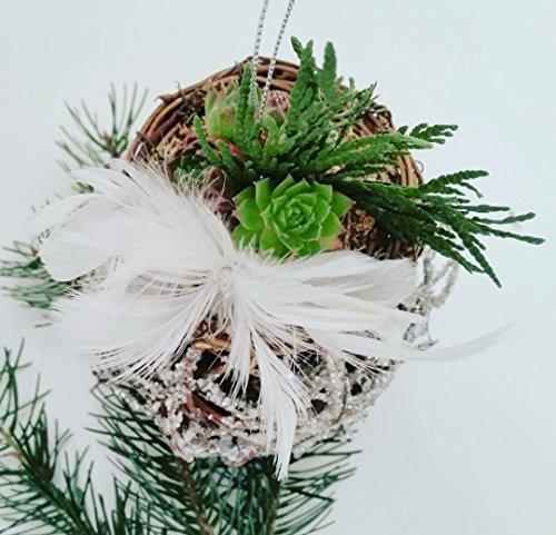 the-green-door-design-hanging-wooden-glitter-ball-birds-nest-ornament