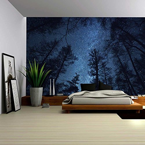 A Gazing View Up Into the Night Starry Sky Surrounded by Trees Wall Mural