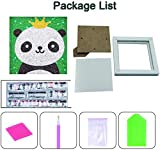 FSTgo 5D Diamond Painting Kits for Kids Full Drill
