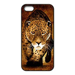 iPhone 5 5s Cell Phone Case Black Art Painted Pattern Jxcw