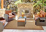 Brown Jordan Prime Label Outdoor Furniture Rug 8x10 Furman Collection Sisal Woven Modern Patio Rugs, Lt. Brown