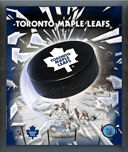 Toronto Maple Leafs NHL Team Logo Puck Photo (Size: 12