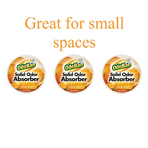 (OdoBan Solid Odor Absorber Eliminator, Air and Pet Odor Freshener Purifier Multi Use Dye Free 3 Pack for Small Spaces, Citrus Fresh Scent)
