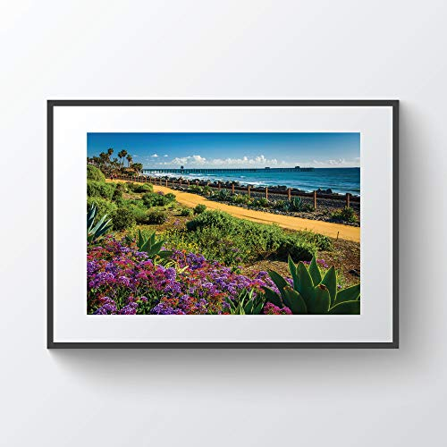 rfy9u7 Colorful Flowers and View of The Fishing Pier at Linda Lane Park in San Clemente California Photo Print Plywood Framed (San Flowers Clemente)