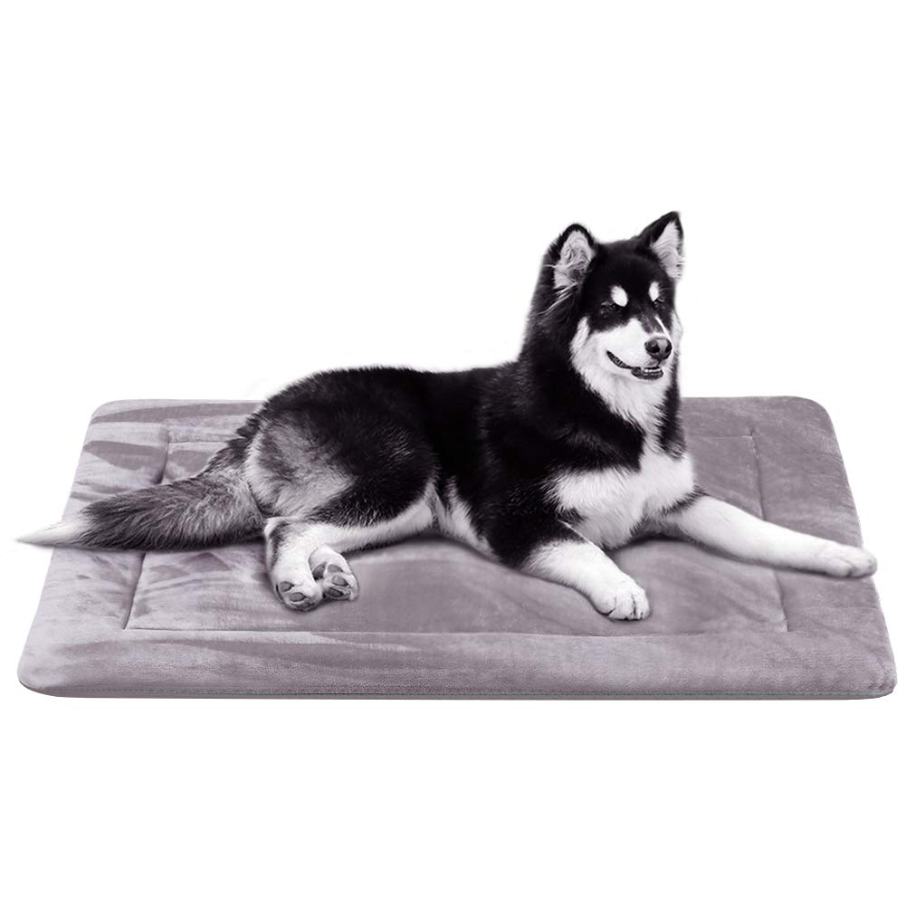 JoicyCo Dog Bed Crate Pad 35 42 47 in Washable Pet Beds Soft Dog Mattress- Anti-Slip Kennel Pads Luxury Color