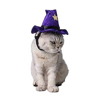 ... Gorra De Bruja Púrpura con Decoración De Estrellas, Disfraces para Fiestas Accesorios De Cosplay para Gatos/Gatitos / Perros Pequeños: Amazon.es: Hogar