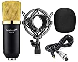 Symphaudio CM-1K Small Diaphragm Condenser Microphone with Included Microphone Sponge / Shock Mount / 3.5mm Cable - Black | Gold
