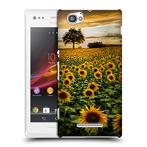 Official Celebrate Life Gallery Big Sunflower Field Florals - Bsf Life Of M