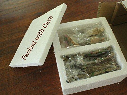 Pretmanns Fairy Garden Fairy Accessories – Miniature Fairy Figurine & Furniture – 14 Piece Starter Kit by Pretmanns (Image #7)