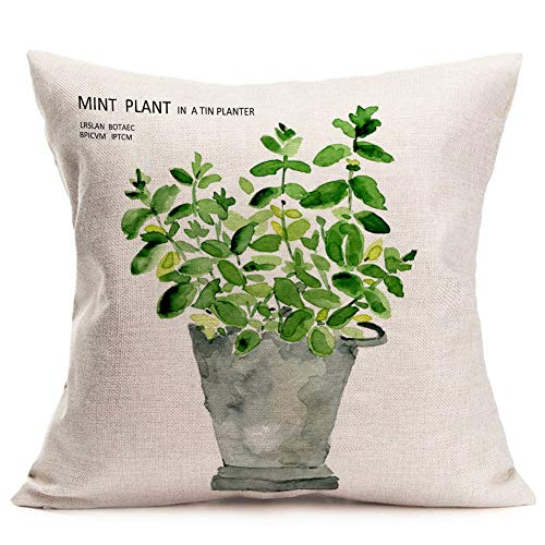 Asminifor Green Leaf Plants Throw Pillow Covers Mint Plant in a Tin Planter Lettering Cotton Linen Cushion Cover Cases Leaves Decorative Square Case for Bed Sofa Car 18