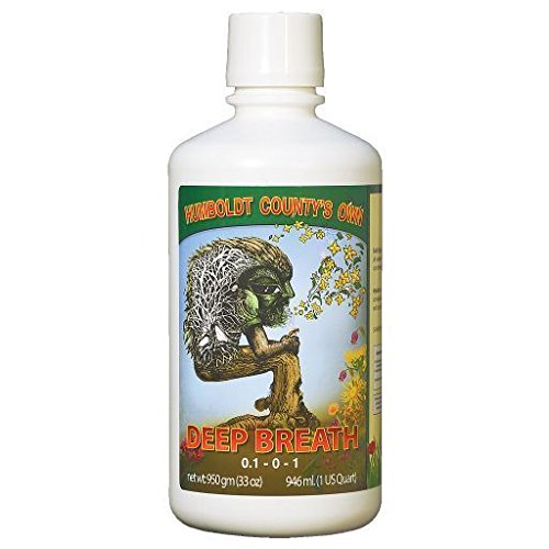 Humboldt County's Own DEEP BREATH - 32oz - Qt HONEY and VITAMIN based cocktail -by# floor-seats; TRYK49351283445392 ()