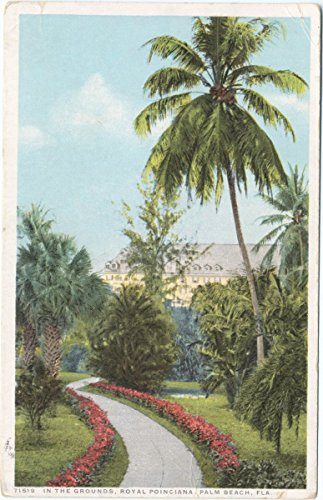 Historic Pictoric Postcard Print | In the Grounds, Royal Poinciana, Palm Beach, Fla, 1913-1918, re- issued through 1930 | Vintage Fine Art
