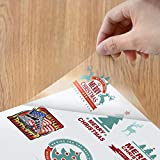 """Printable Clear Sticker Paper 8.3"""" x 11.7""""- Blank"""