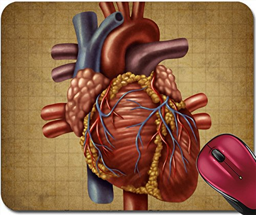 Liili Mousepad IMAGE ID: 11840341 Human heart in an old vintage grunge medical document texture as a vintage chart for circu (Medical Chart Cabinet)