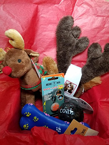 Lump Costume Of Coal (Dog Toys Christmas Gift Set - Lump of)